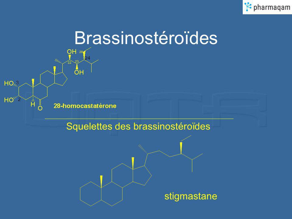 Brassinostéroïdes 24 3 2 Squelettes des brassinostéroïdes stigmastane