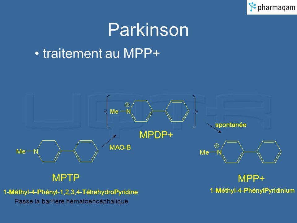 Parkinson traitement au MPP+ MPDP+ MPTP MPP+ spontanée MAO-B