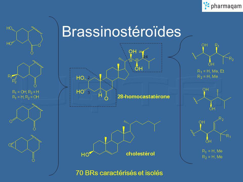 Brassinostéroïdes 24 2 3 70 BRs caractérisés et isolés