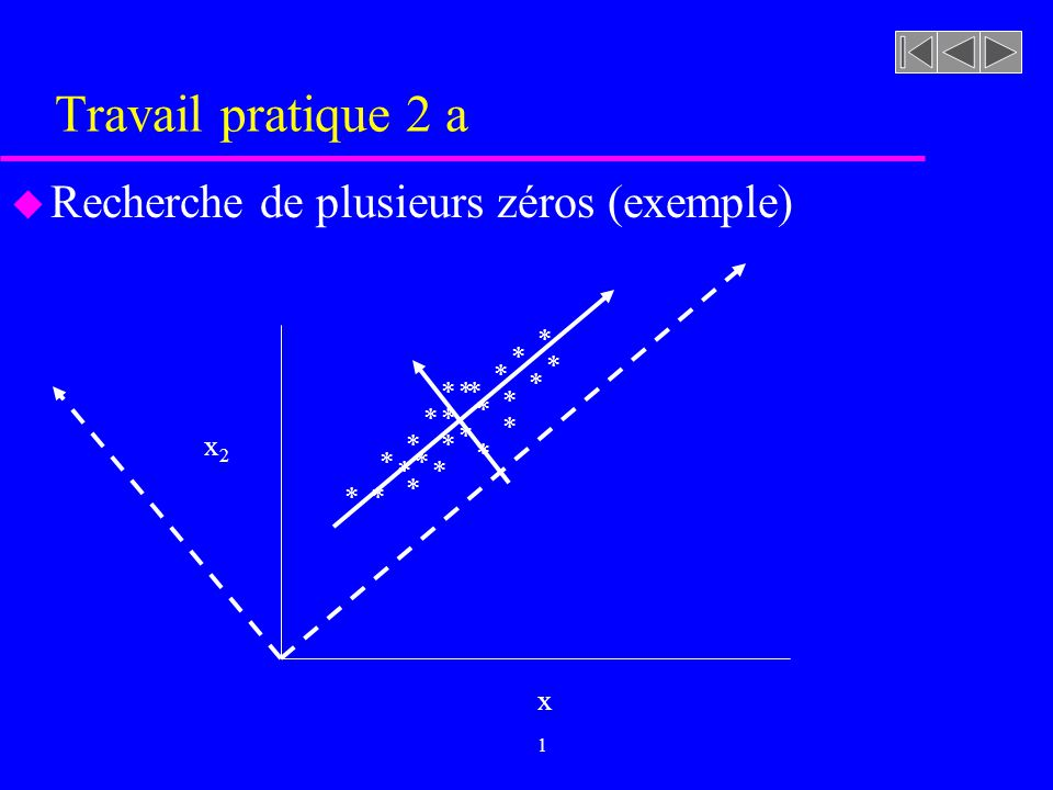 Travail pratique 2 a Recherche de plusieurs zéros (exemple) * * * * *