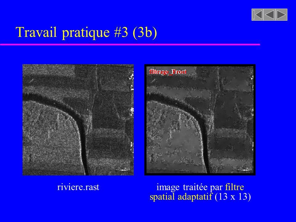 Travail pratique #3 (3b) riviere.rast image traitée par filtre