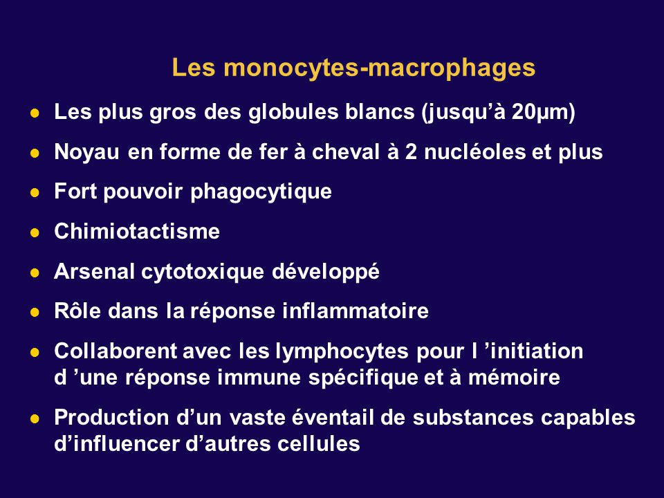 Les monocytes-macrophages