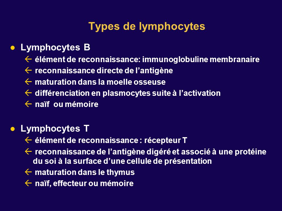 Types de lymphocytes Lymphocytes B Lymphocytes T