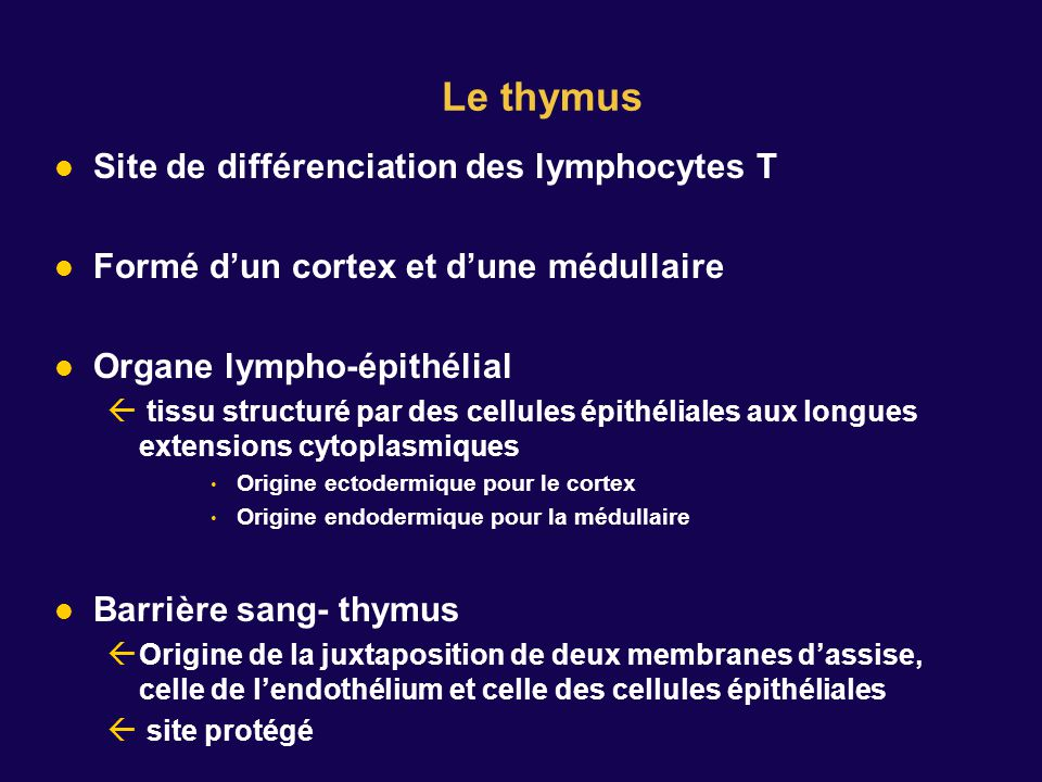 Le thymus Site de différenciation des lymphocytes T