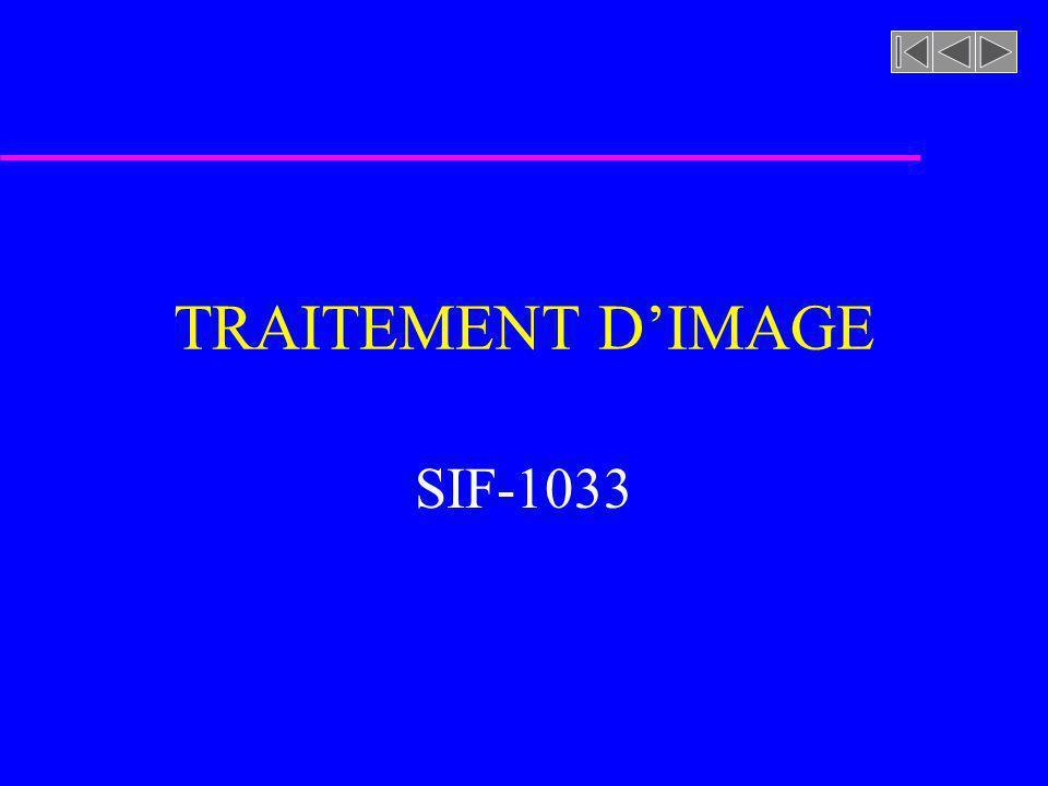TRAITEMENT D'IMAGE SIF-1033