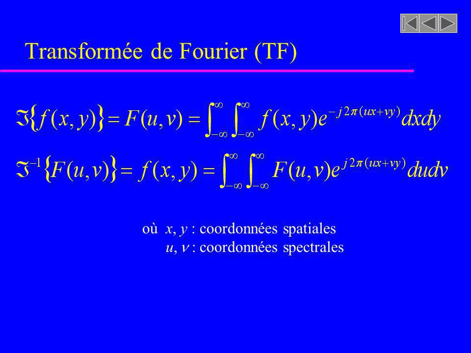 Transformée de Fourier (TF)