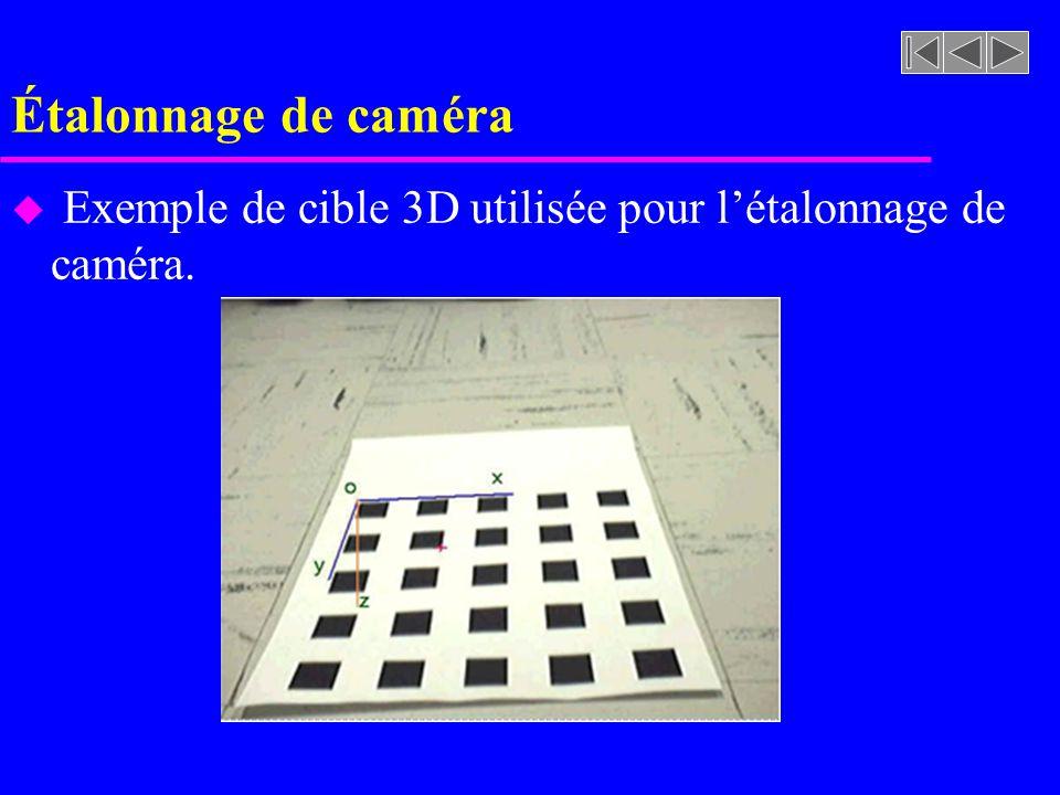 Étalonnage de caméra Exemple de cible 3D utilisée pour l'étalonnage de caméra.