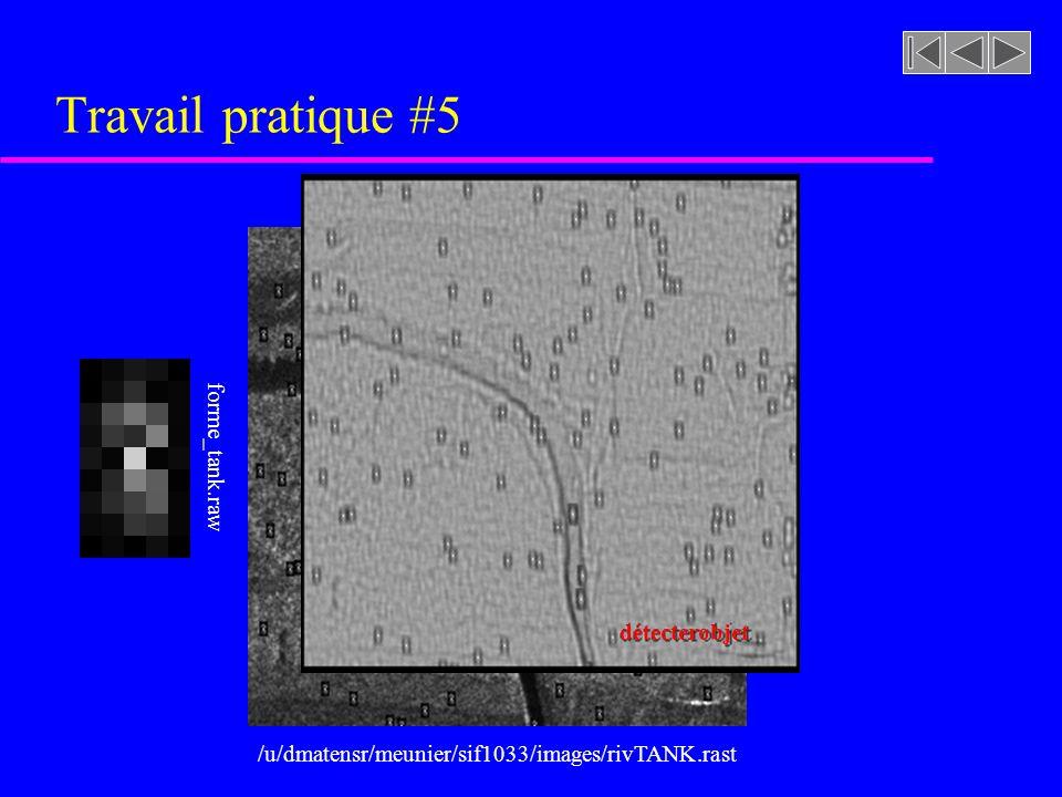 Travail pratique #5 forme_tank.raw détecterobjet