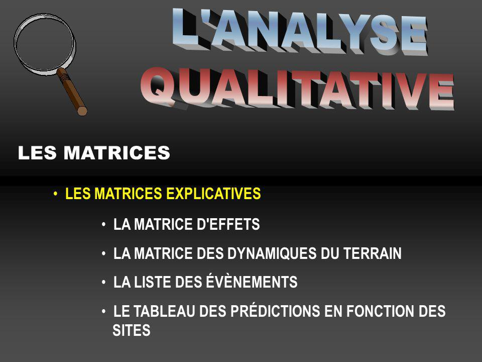 L ANALYSE QUALITATIVE LES MATRICES LES MATRICES EXPLICATIVES