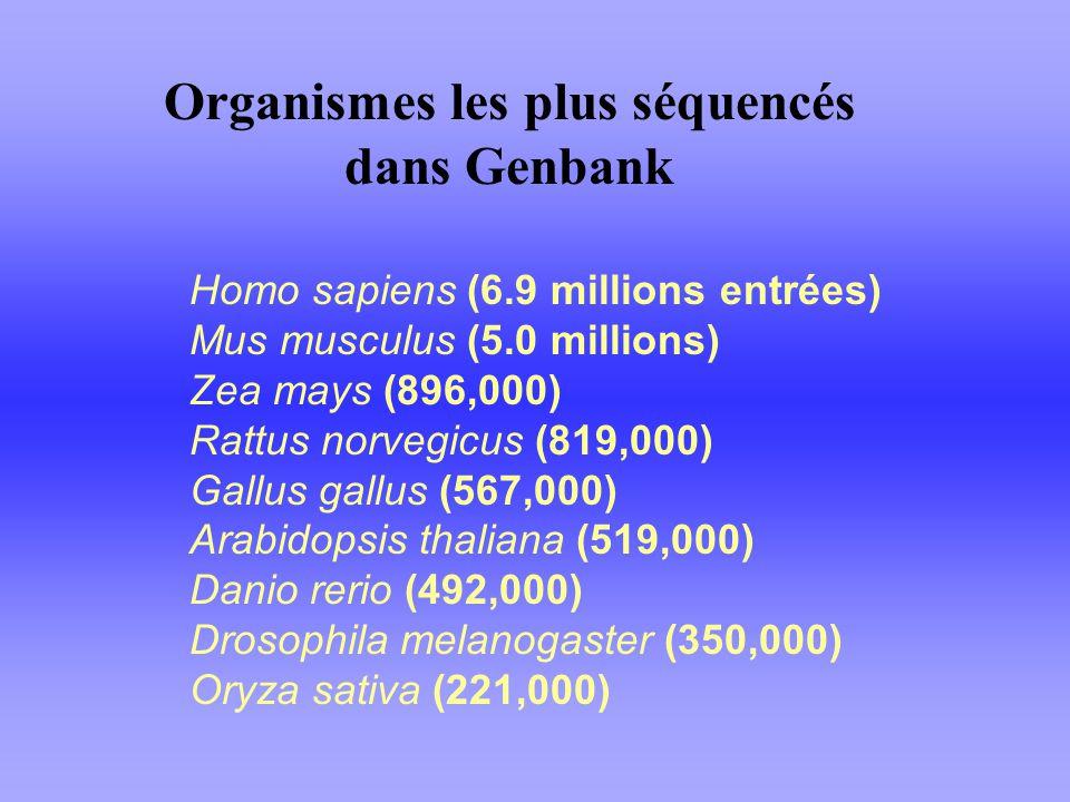 Organismes les plus séquencés