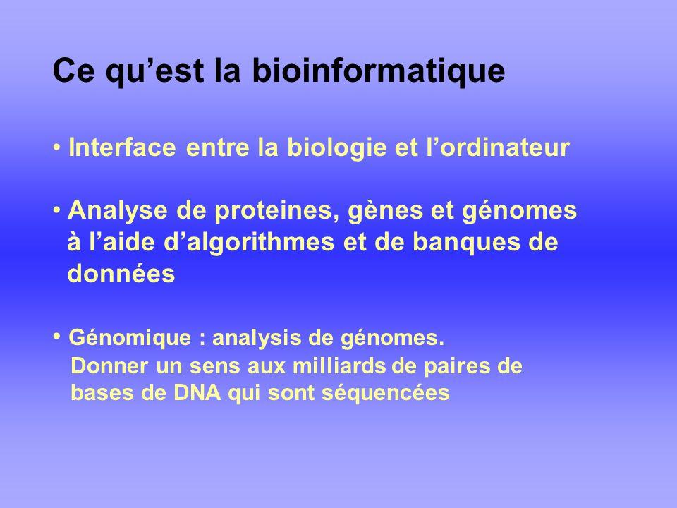 Ce qu'est la bioinformatique