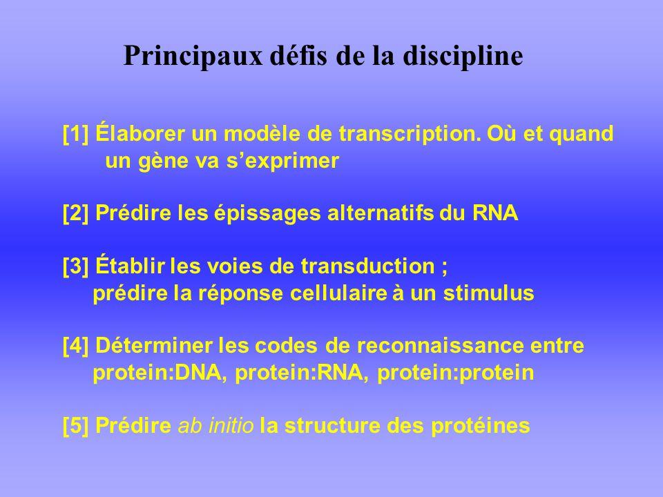 Principaux défis de la discipline