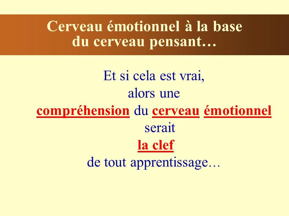 Cerveau émotionnel à la base du cerveau pensant…