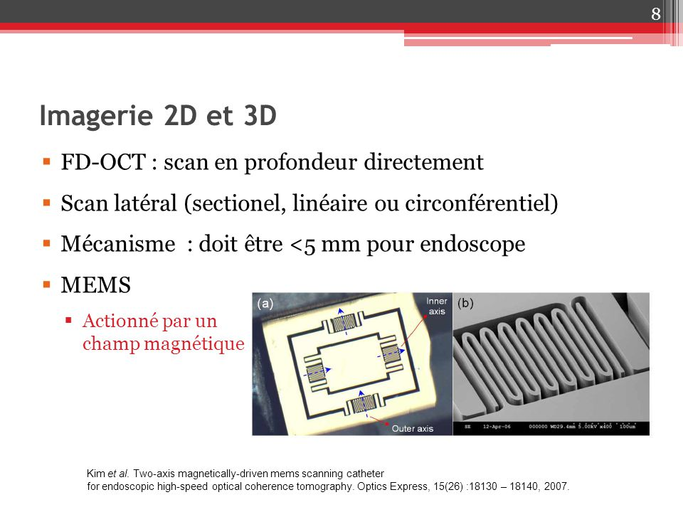 Imagerie 2D et 3D FD-OCT : scan en profondeur directement