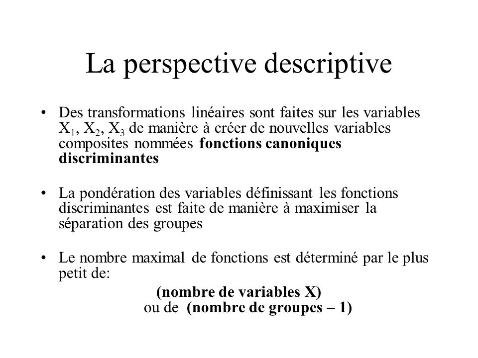 La perspective descriptive