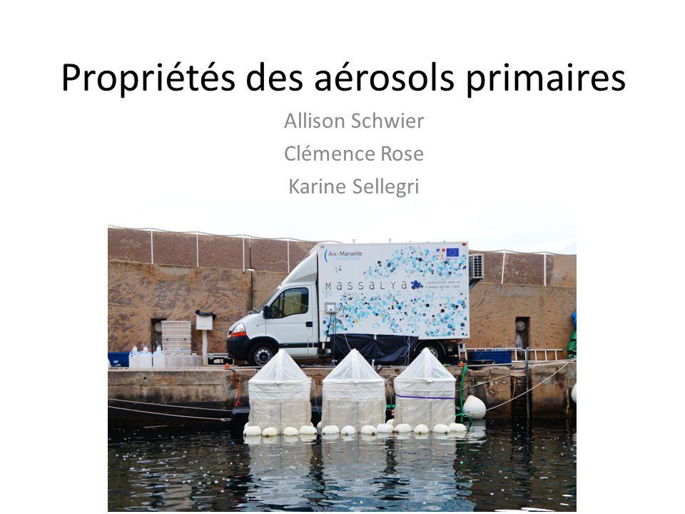 Propriétés des aérosols primaires