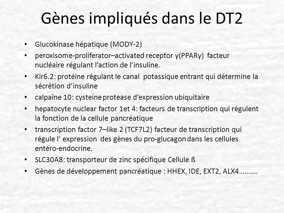 Gènes impliqués dans le DT2