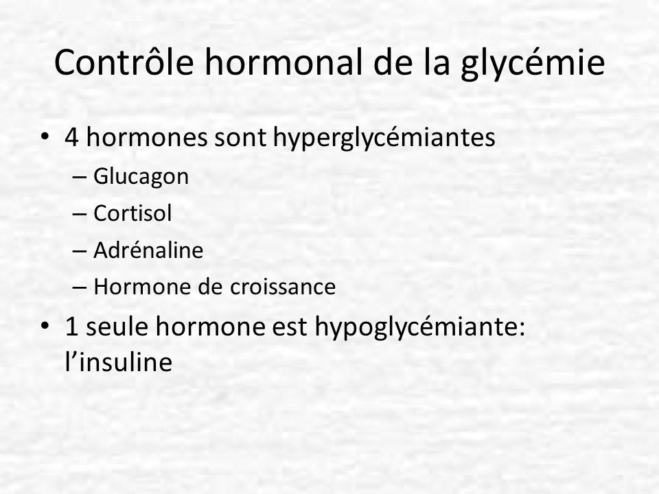 Contrôle hormonal de la glycémie