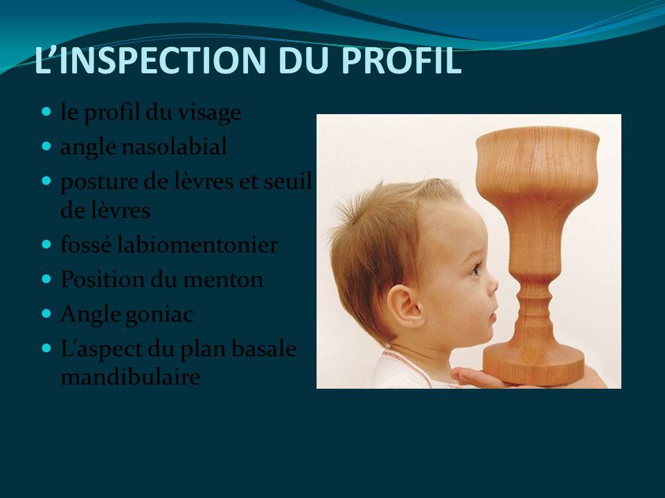 L'INSPECTION DU PROFIL