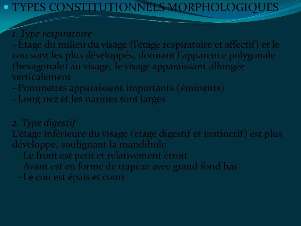 TYPES CONSTITUTIONNELS MORPHOLOGIQUES