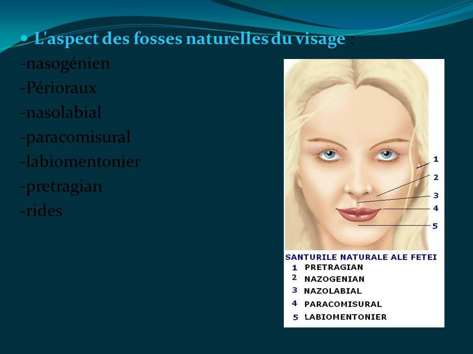 L aspect des fosses naturelles du visage :