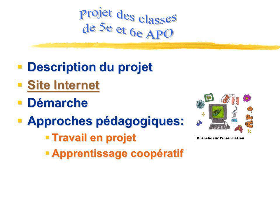 Projet des classes de 5e et 6e APO Description du projet Site Internet