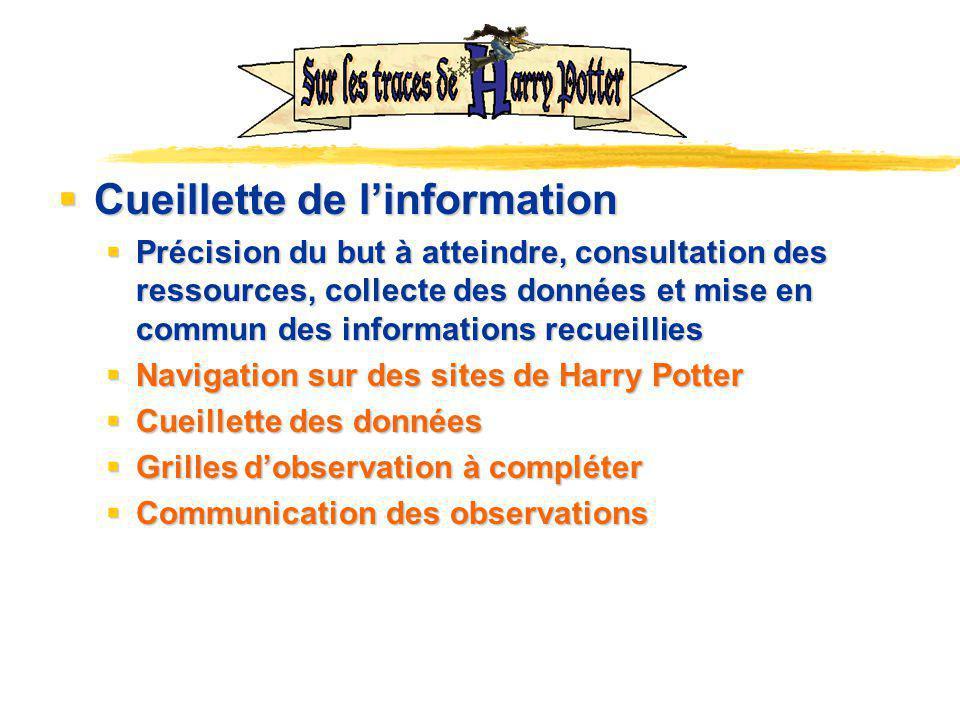 Cueillette de l'information
