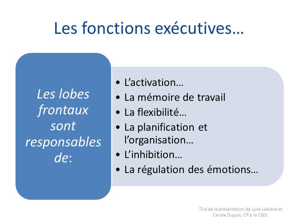 Les fonctions exécutives…