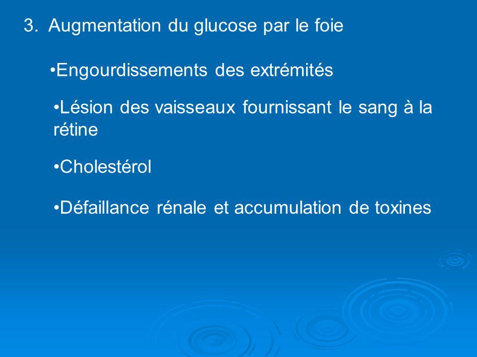 3. Augmentation du glucose par le foie