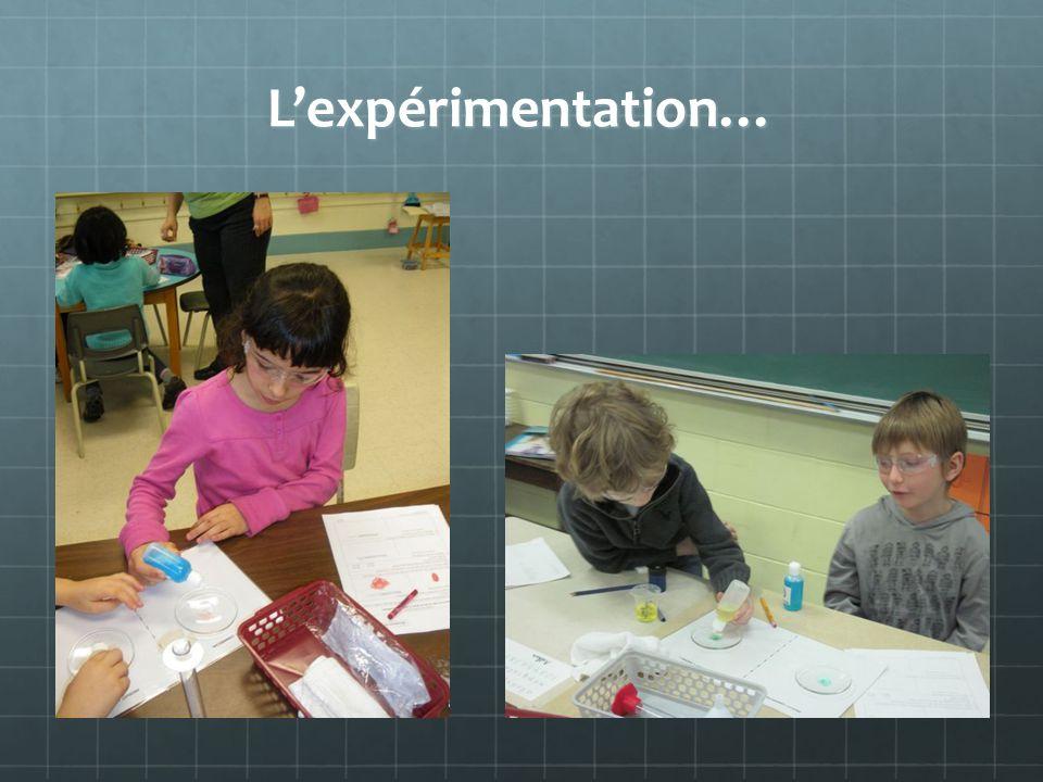 L'expérimentation…