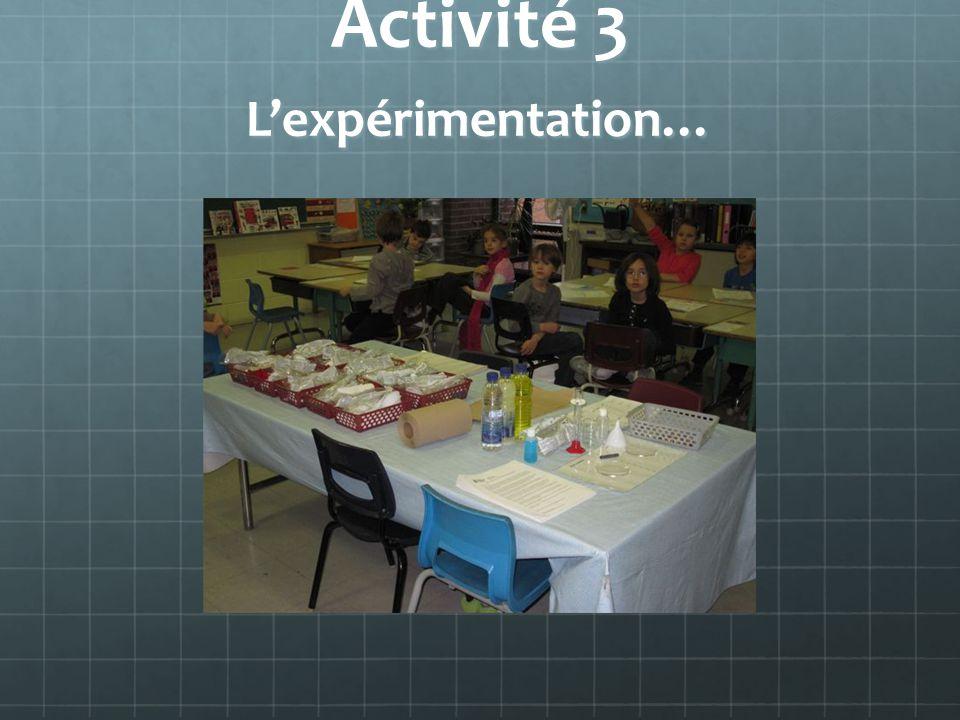 Activité 3 L'expérimentation…