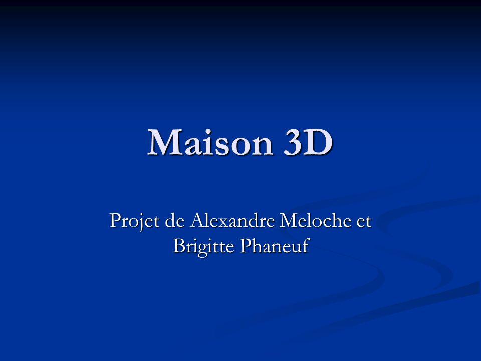 Projet de Alexandre Meloche et Brigitte Phaneuf