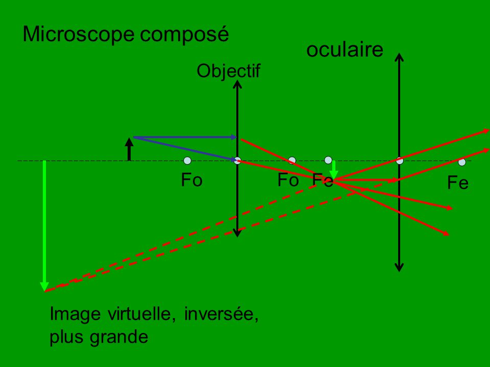 Microscope composé oculaire Objectif Fo Fo Fe Fe