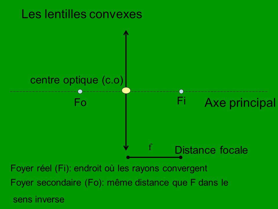 Les lentilles convexes