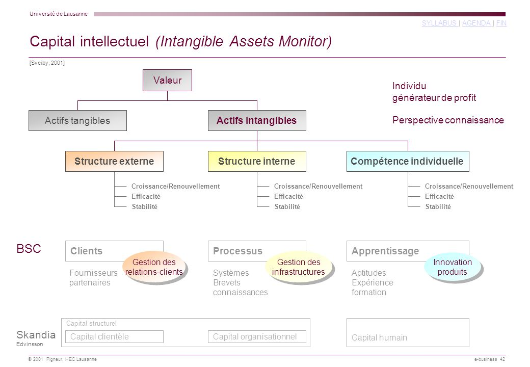 Capital intellectuel (Intangible Assets Monitor)