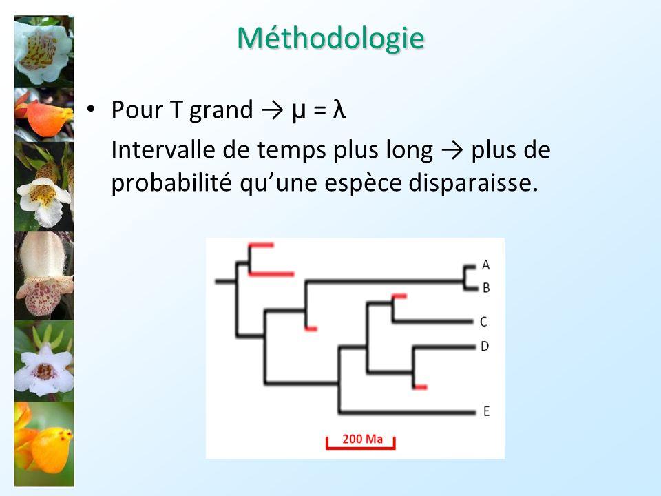 Méthodologie Pour T grand → µ = λ