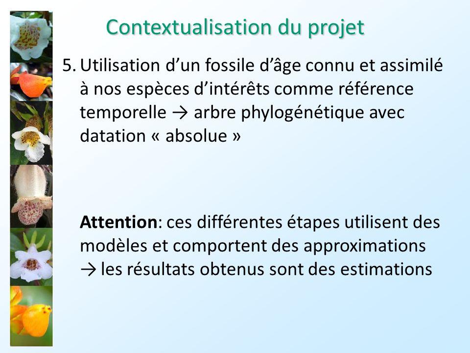 Contextualisation du projet
