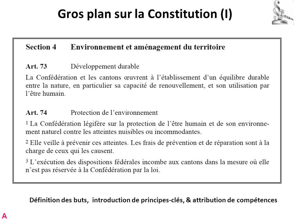 Gros plan sur la Constitution (I)