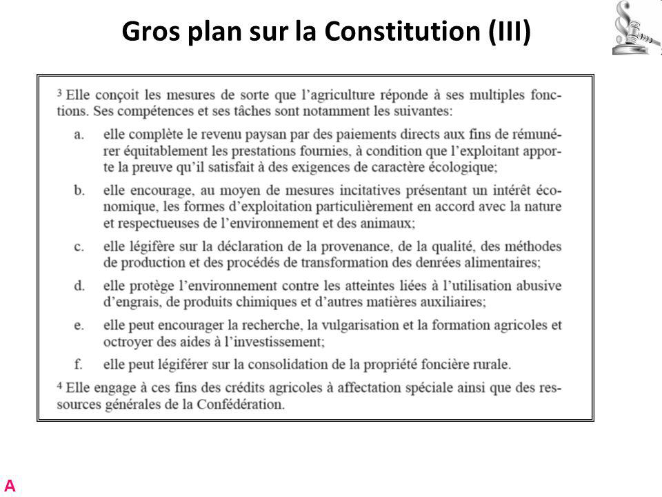 Gros plan sur la Constitution (III)
