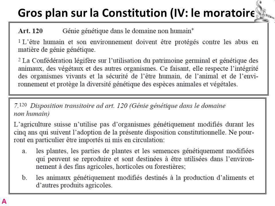 Gros plan sur la Constitution (IV: le moratoire)