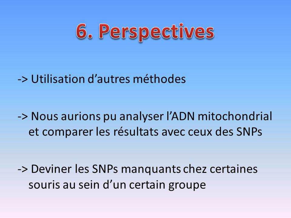 6. Perspectives
