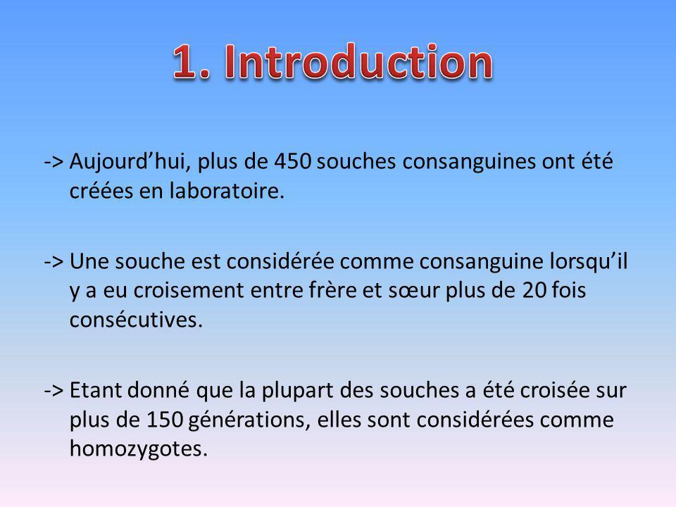1. Introduction -> Aujourd'hui, plus de 450 souches consanguines ont été créées en laboratoire.