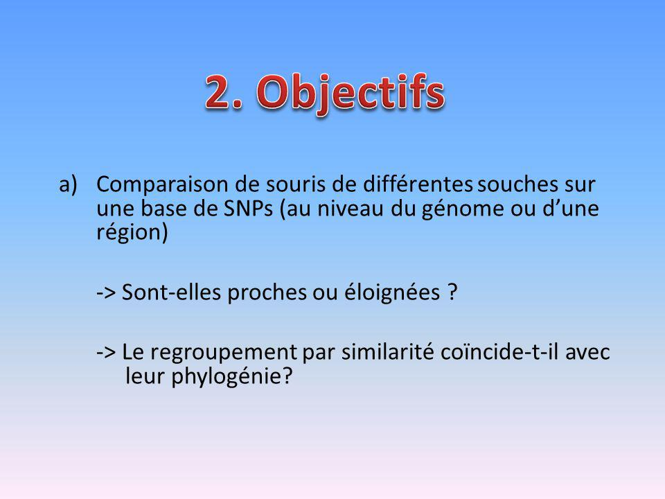 2. Objectifs Comparaison de souris de différentes souches sur une base de SNPs (au niveau du génome ou d'une région)