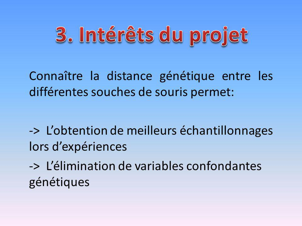 3. Intérêts du projet Connaître la distance génétique entre les différentes souches de souris permet: