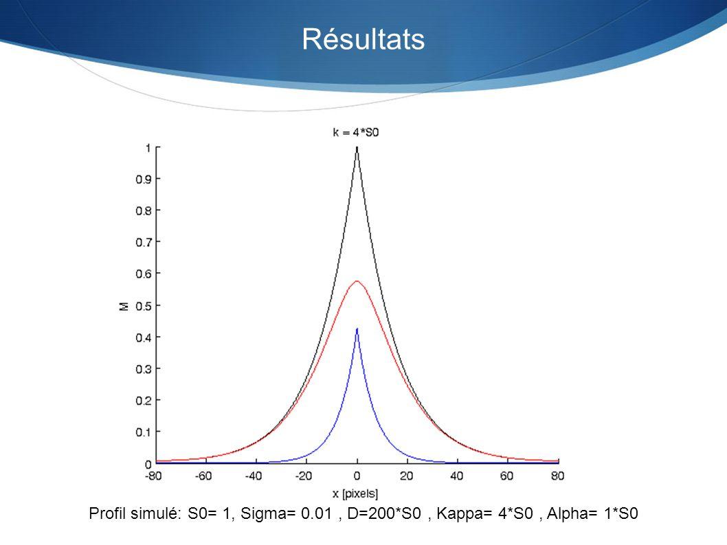 Résultats Profil simulé: S0= 1, Sigma= 0.01 , D=200*S0 , Kappa= 4*S0 , Alpha= 1*S0