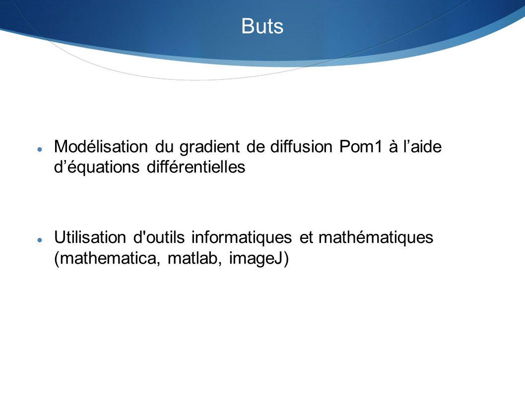 Buts Modélisation du gradient de diffusion Pom1 à l'aide d'équations différentielles.