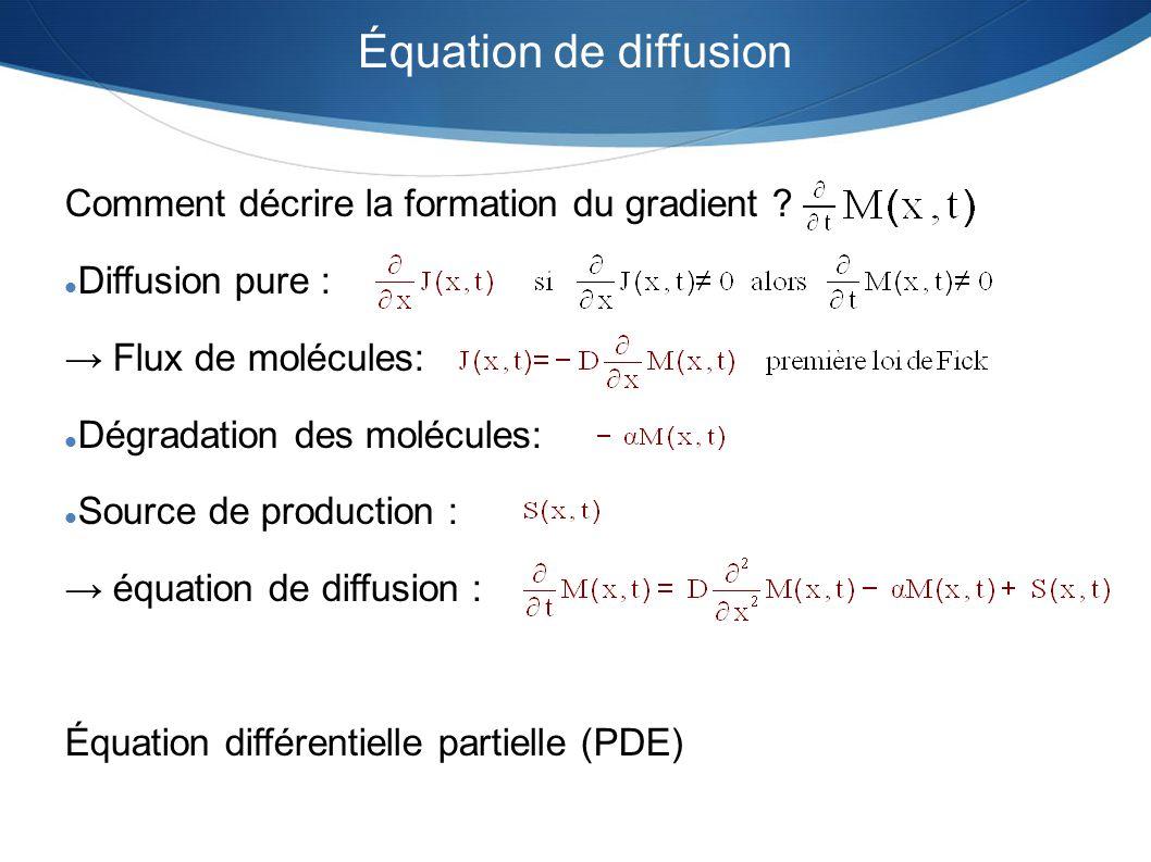 Équation de diffusion Comment décrire la formation du gradient