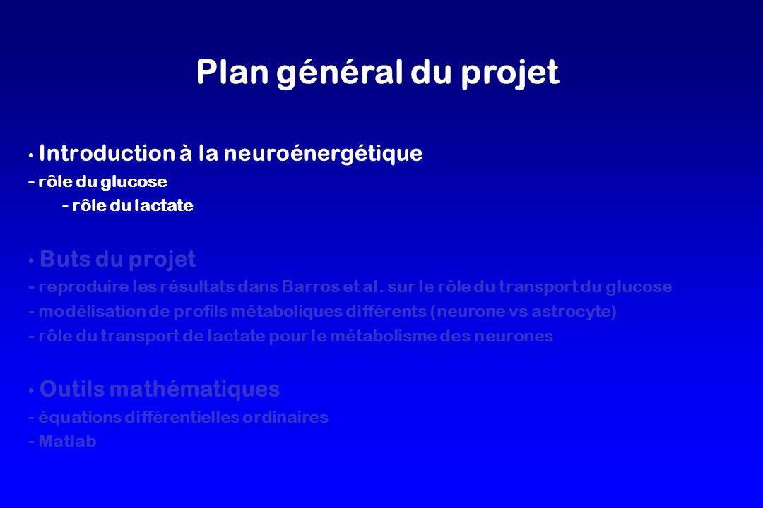 Plan général du projet Introduction à la neuroénergétique
