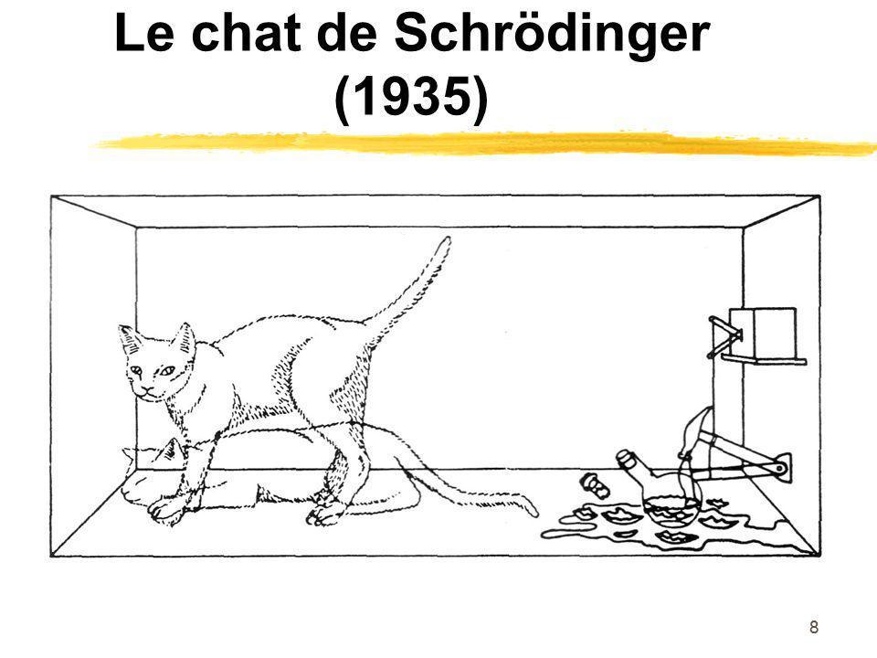 Le chat de Schrödinger (1935)
