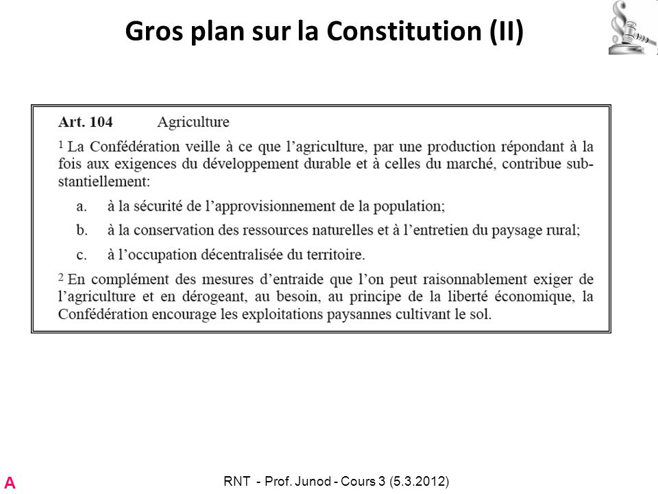 Gros plan sur la Constitution (II)